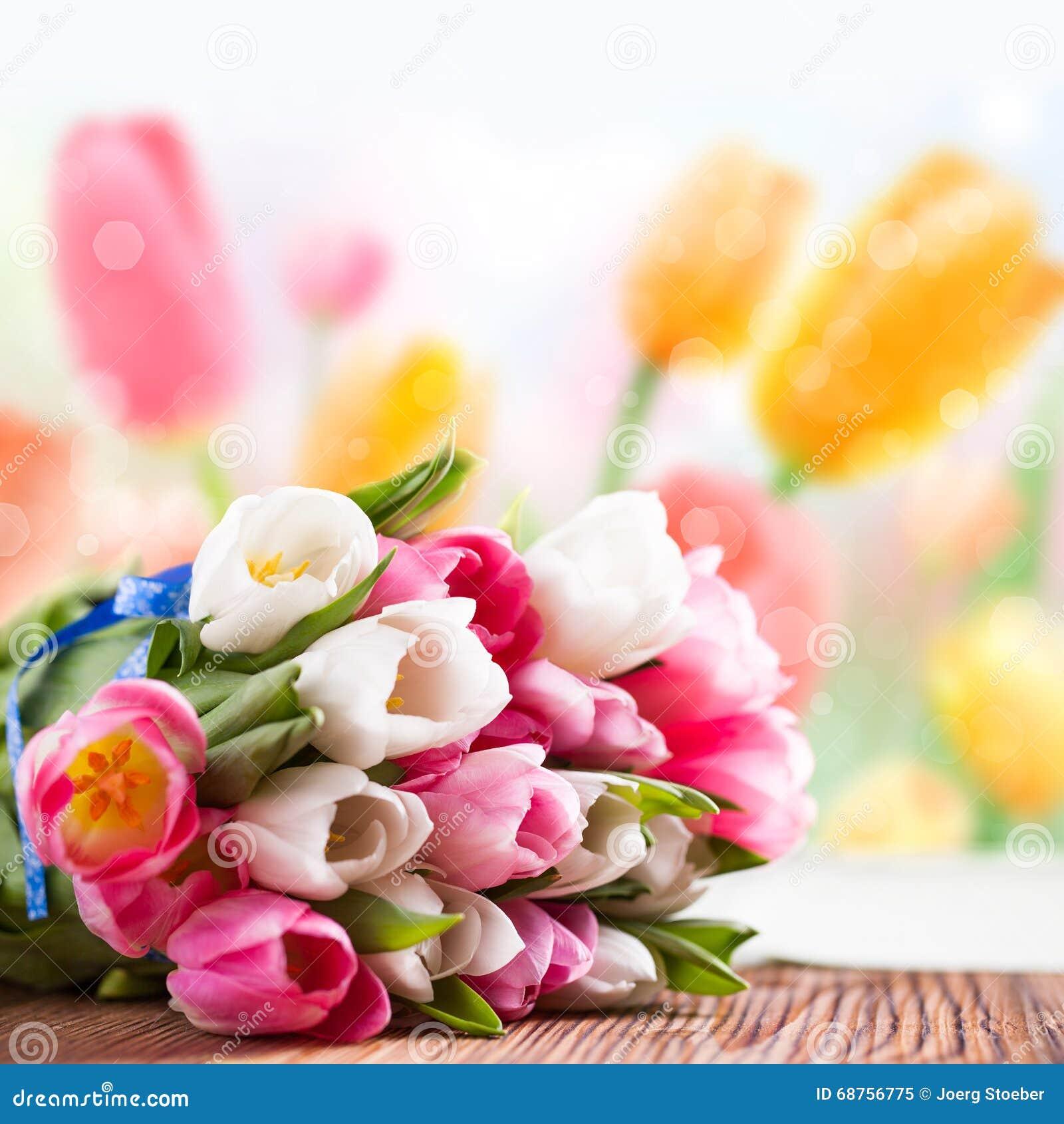 Bukiet tulipany