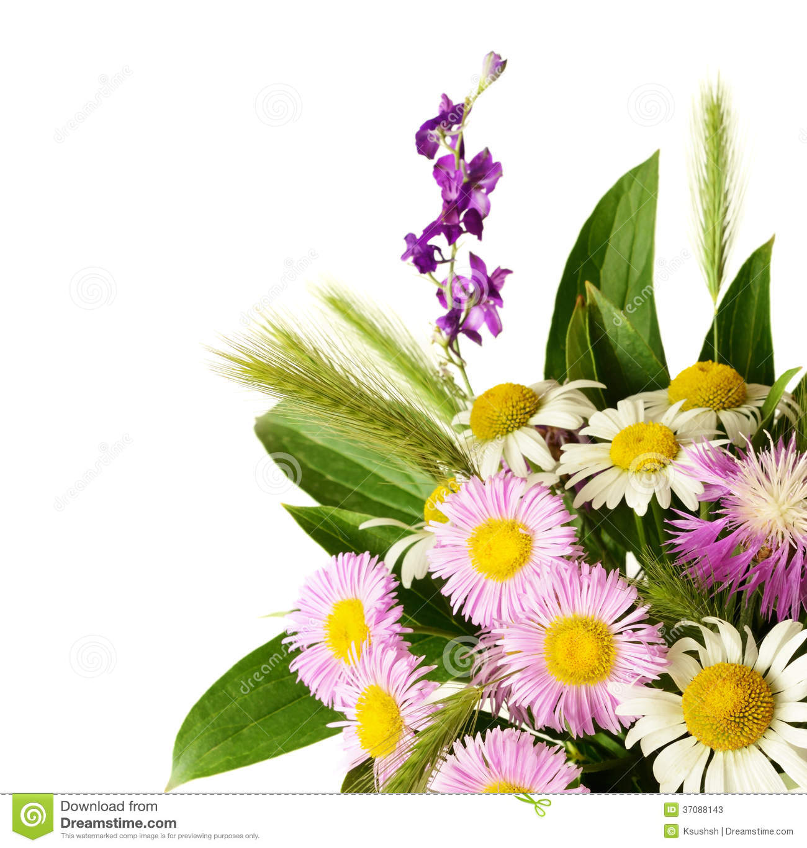 Download Bukiet wildflowers obraz stock. Obraz złożonej z kąt - 37088143