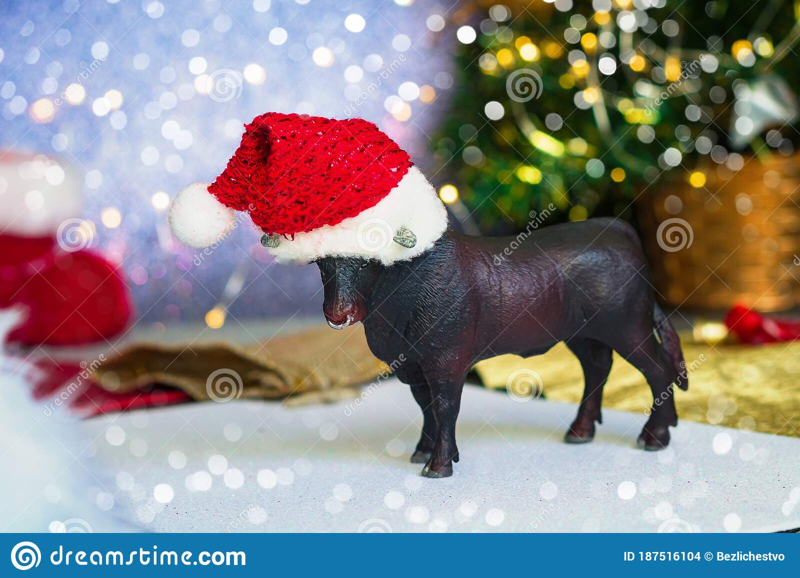 Bull As A Symbol Of The New Year And Christmas 2021 On ...