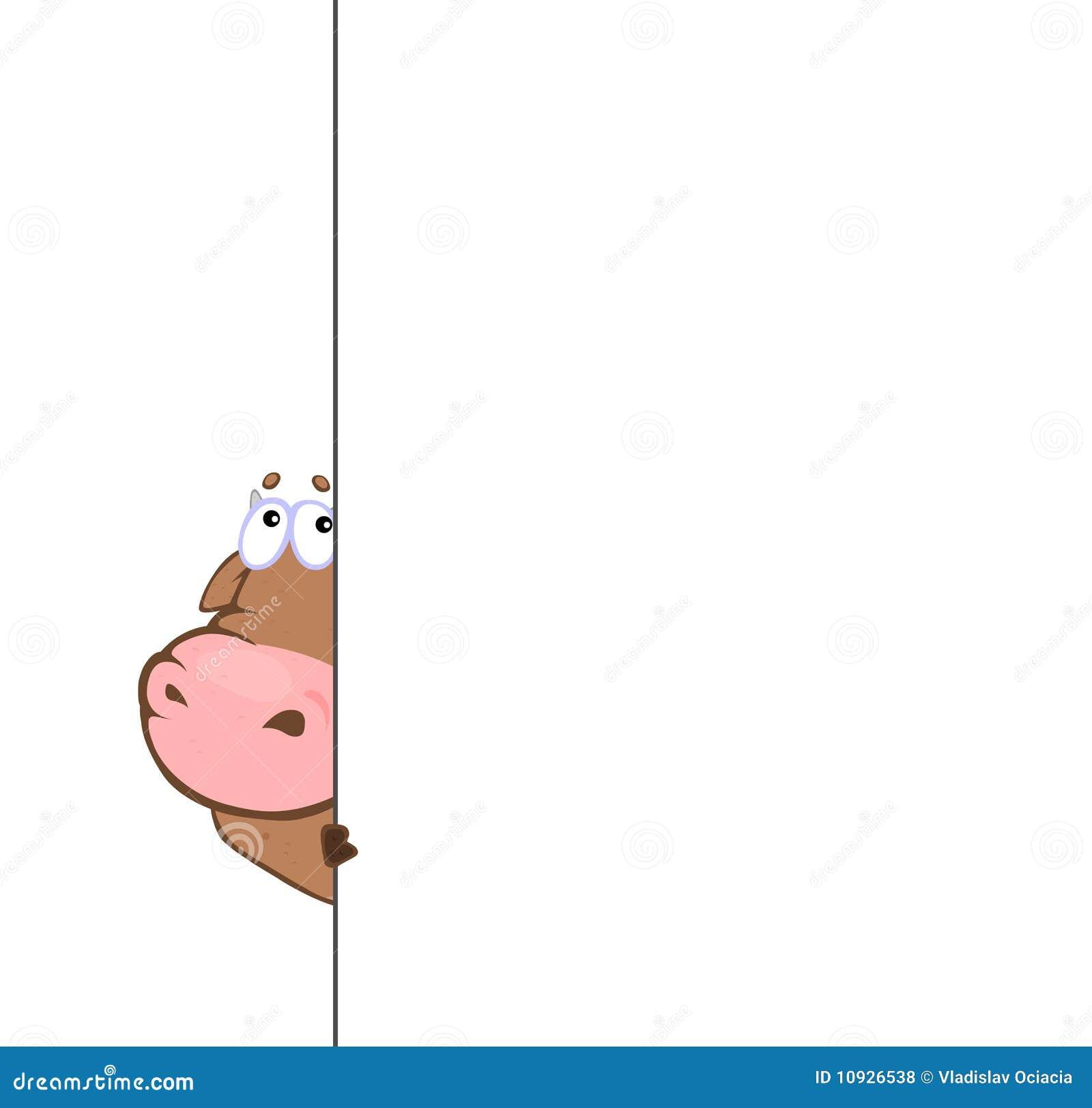 Bull derrière le banc