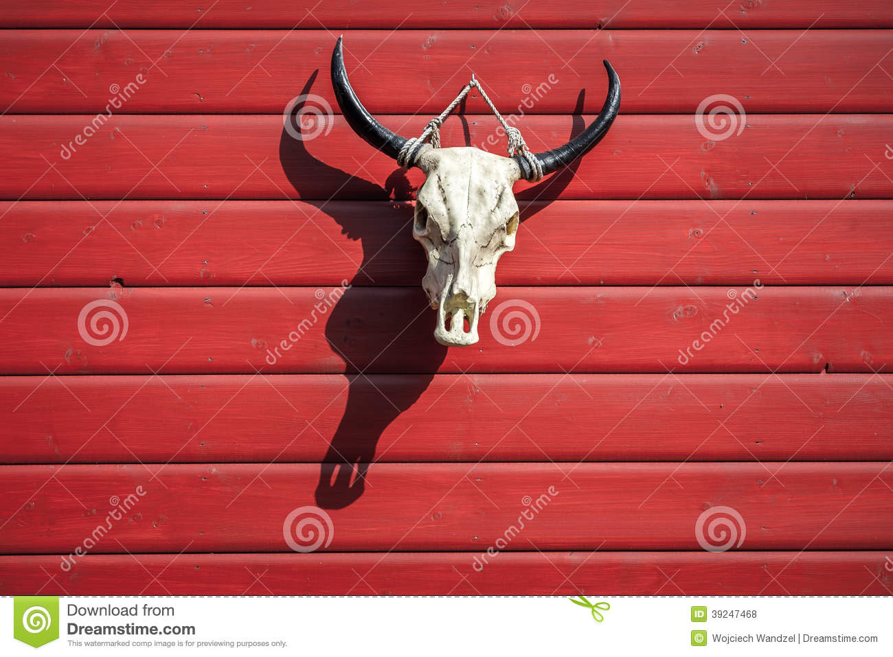 Bull Skull Hanging On The Red Barn With Shadow Stock Photo