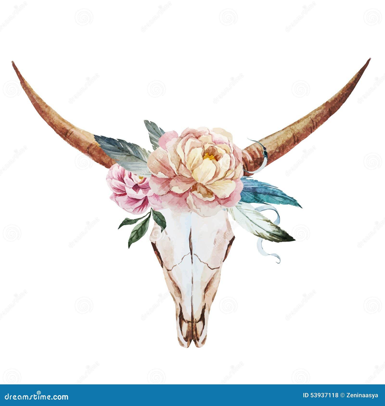 bull skull watercolor stock vector image 53937118 deer clip art png deer clip art examples