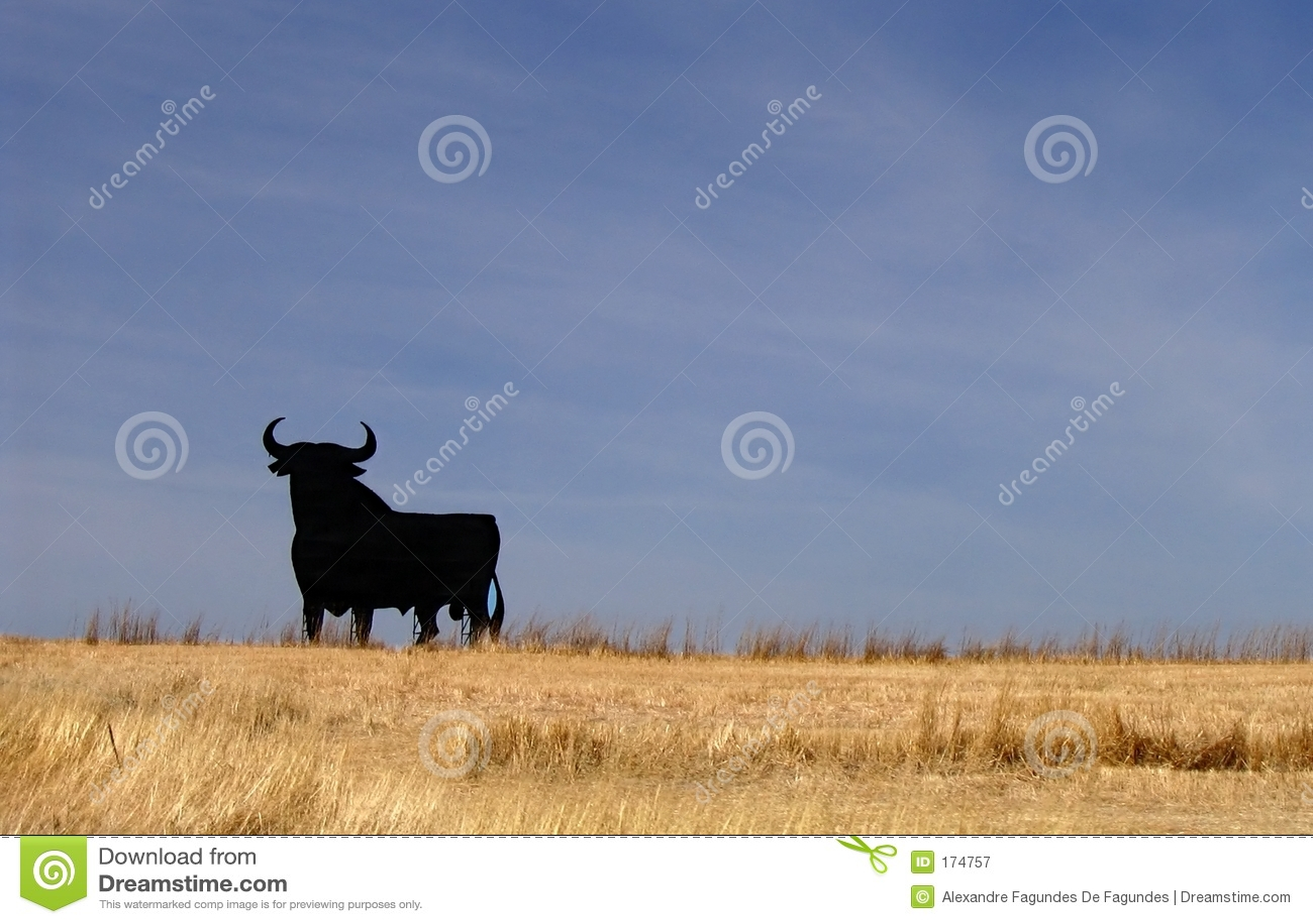 Download Bull Spain stock image. Image of spain, yellow, road, wheat - 174757