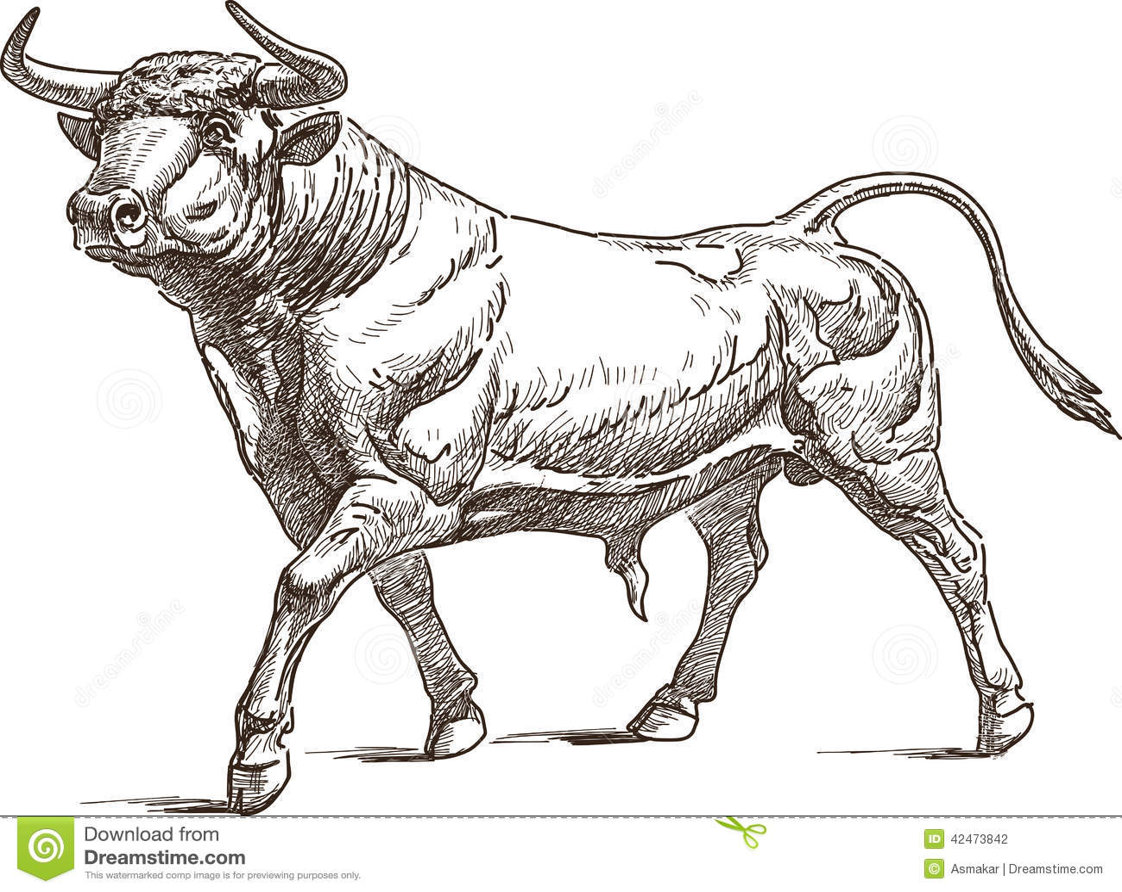 bull stock vector image 42473842