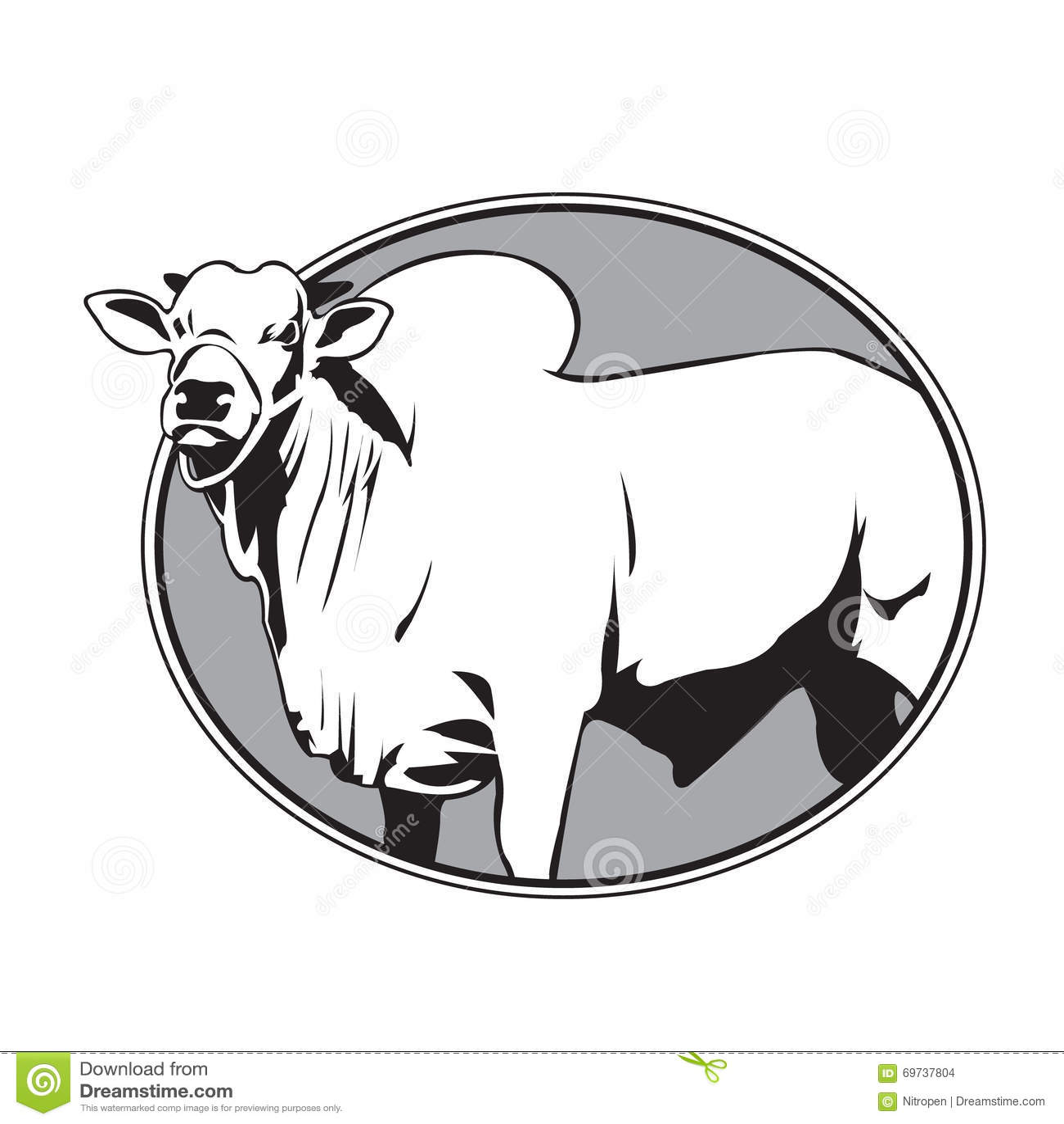 Bull Zebu Vintage Logo Stock Vector - Image: 69737804