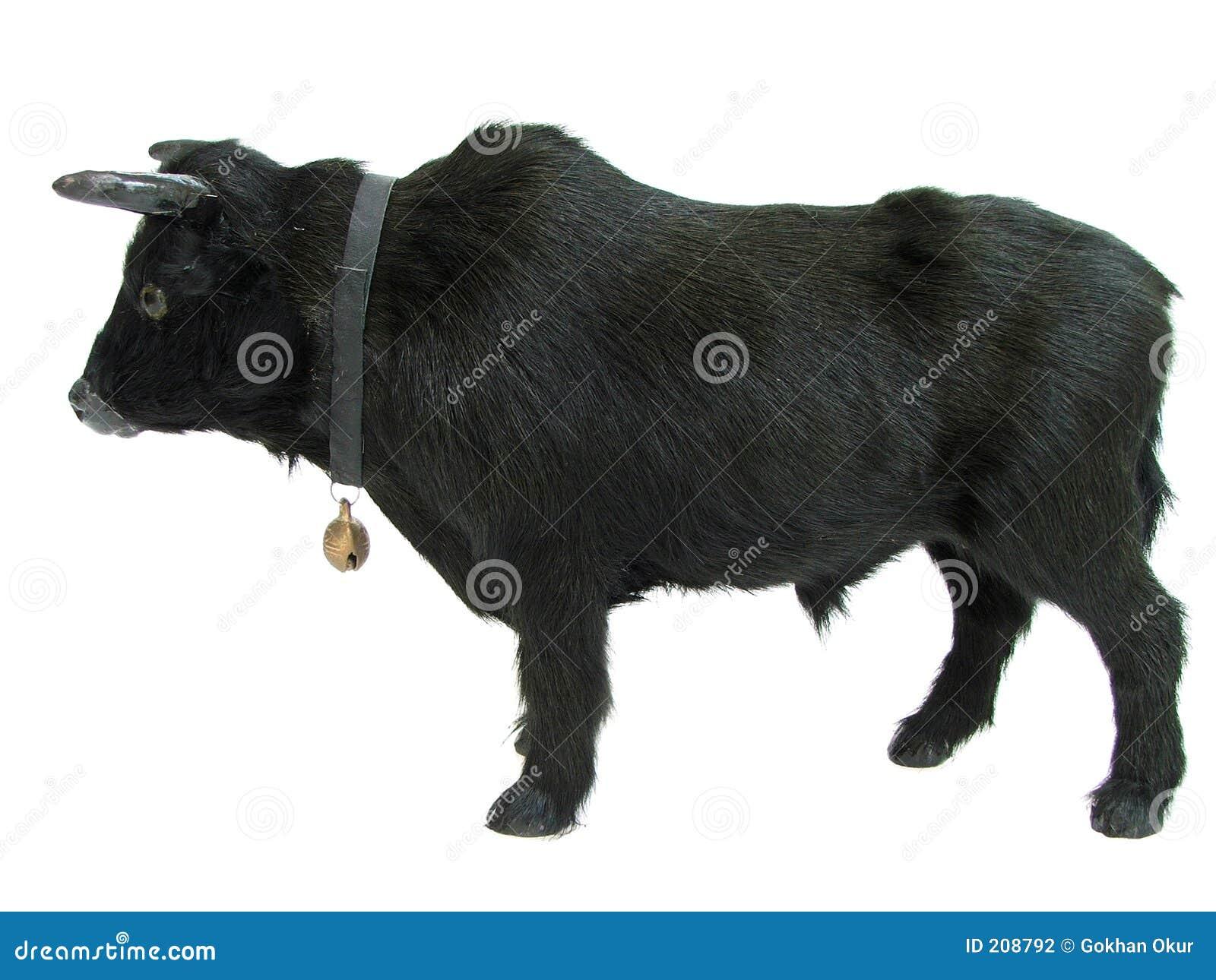 Bull01