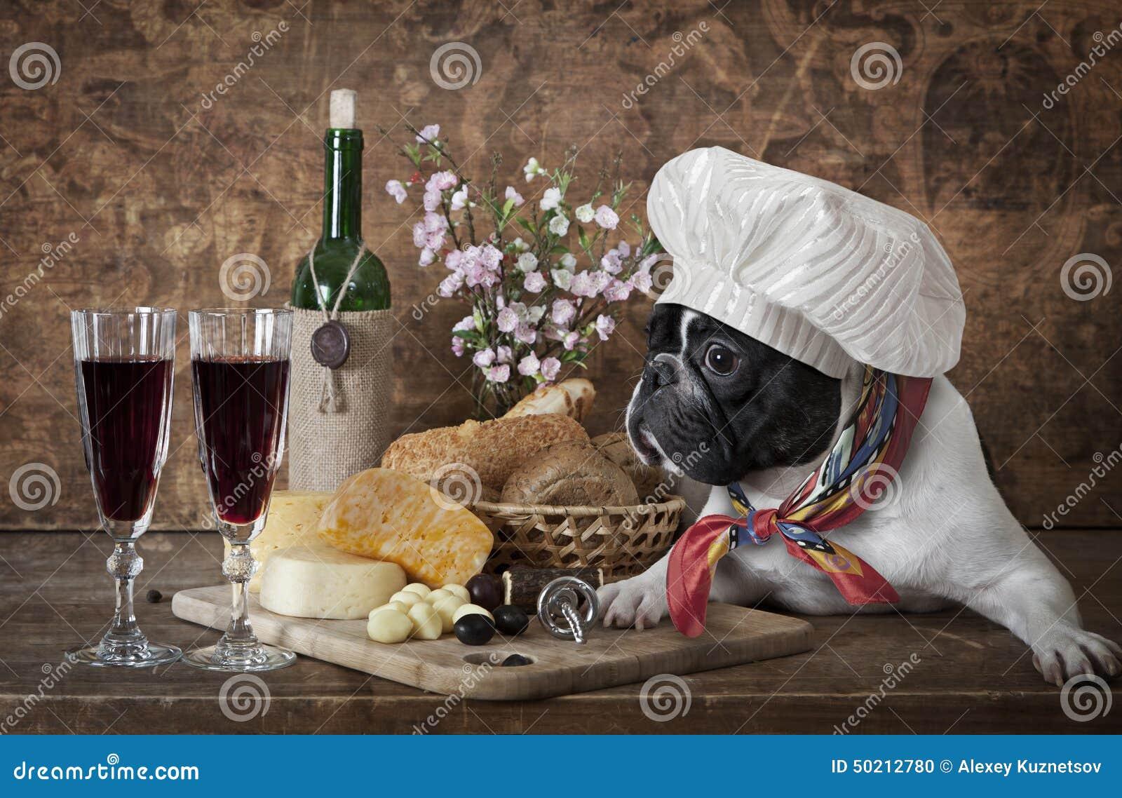 Bulldog francese in cappello del cuoco unico fotografia for Bottiglia in francese