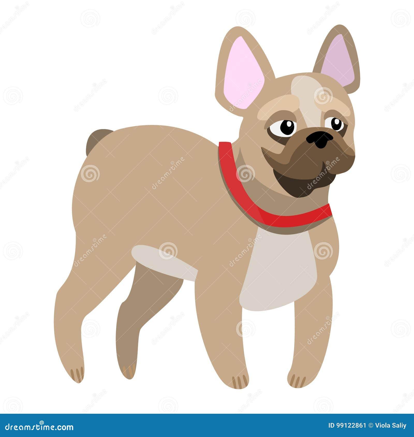 Bulldog francese piacevole