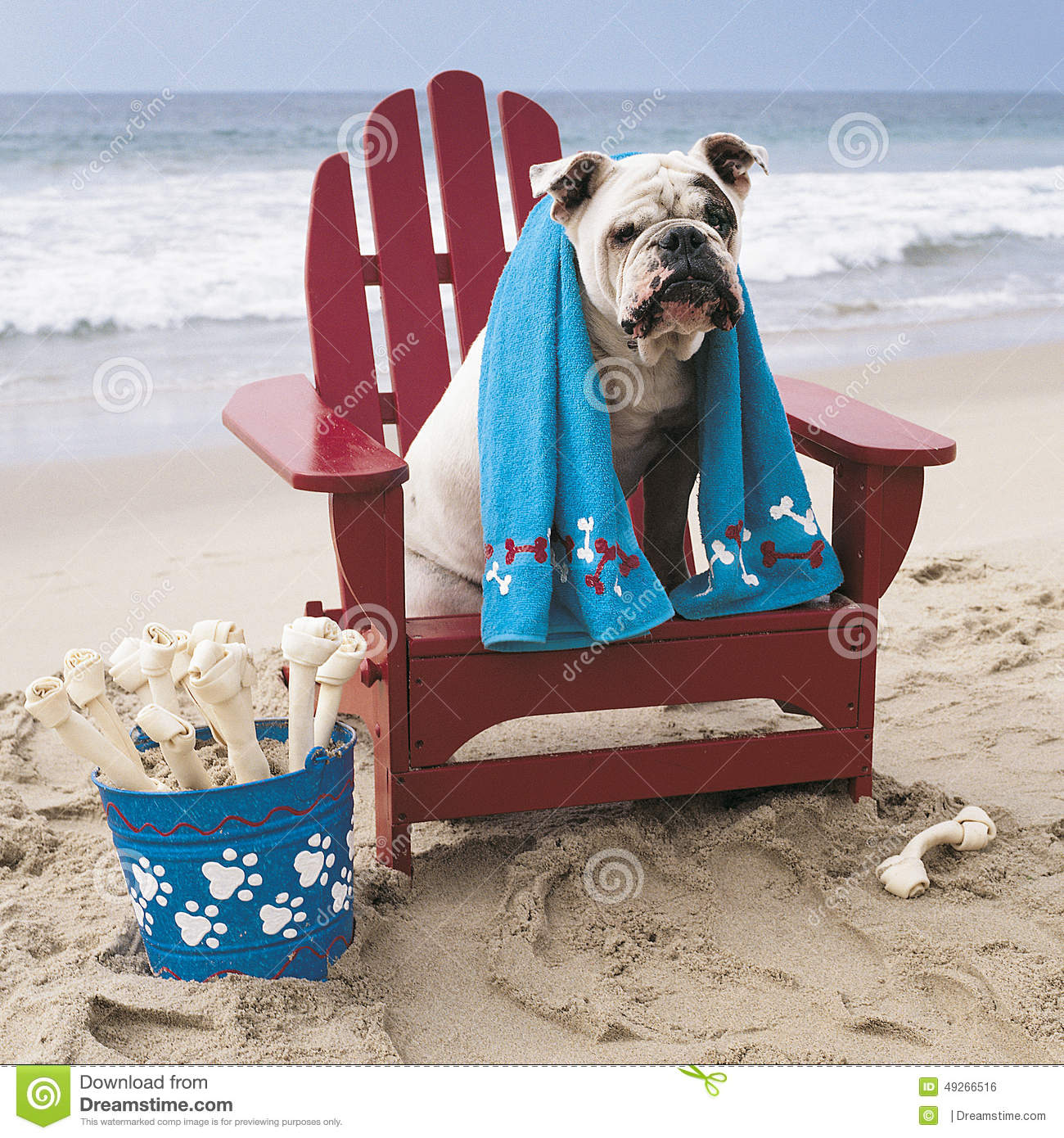Adirondack chairs clipartsilhouette free images at clkercom - Clipart Images Dog Bone Clipart Bulldog On Red Adirondack Chair On Beach Stock Photo