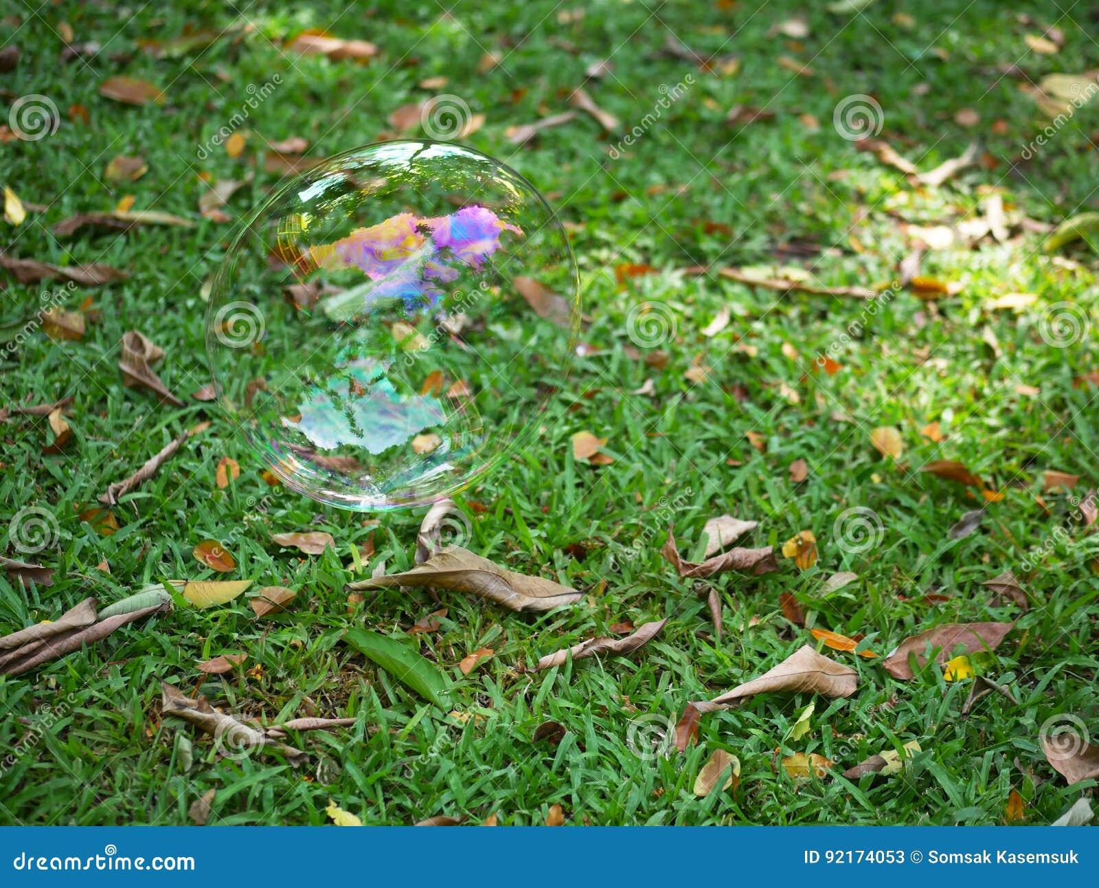 Bulle D Air Sur Le Jardin De Plancher Image Stock Image Du
