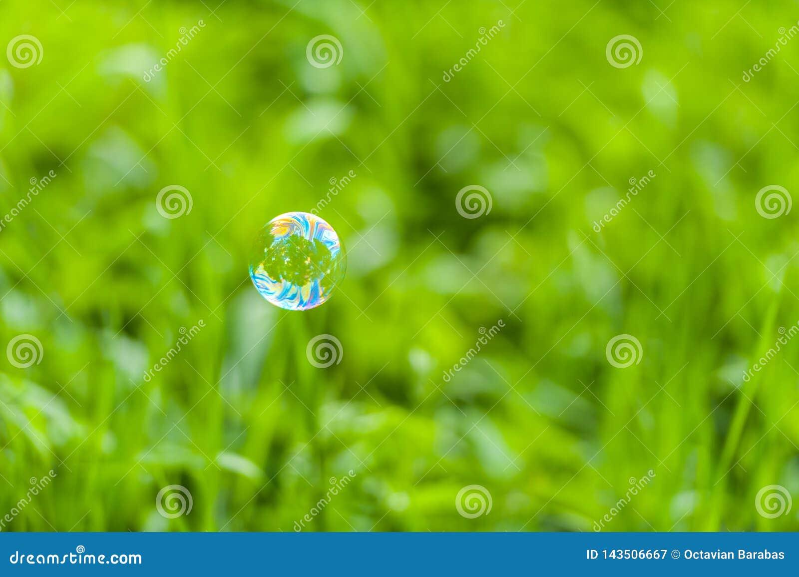 Bulle de savon devant le fond vert