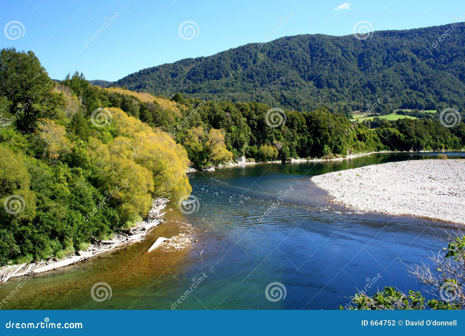 Buller rzeki
