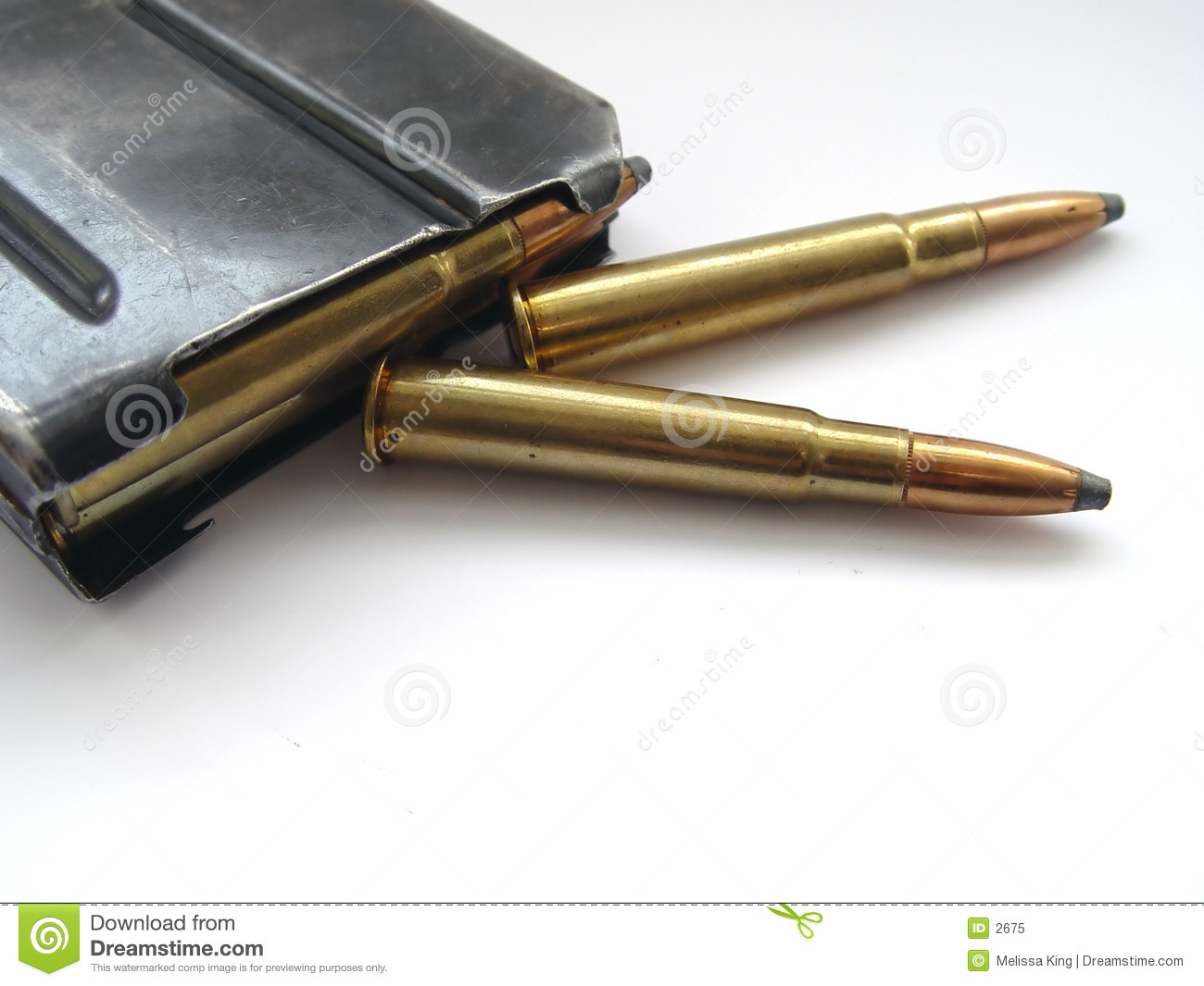 Bullets with case