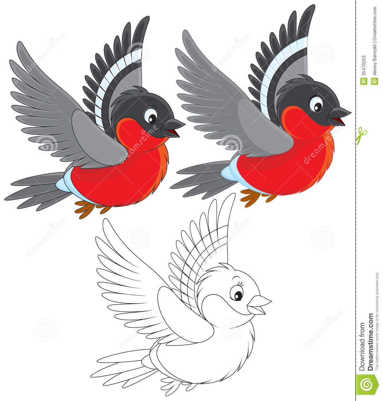 Bullfinch stock illustration. Illustration of coloring - 35470253