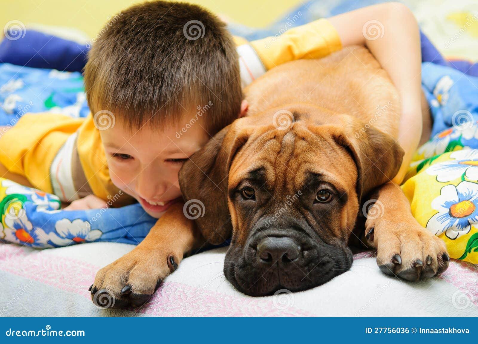 Bullmastiff de chiot avec le garçon