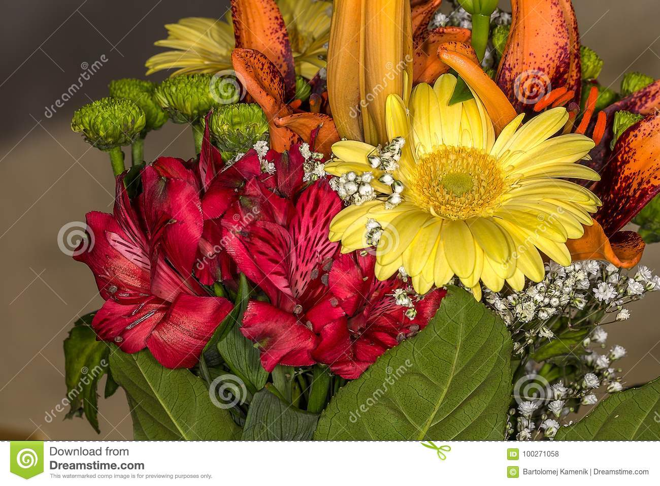 Bunch Of Beautiful Flowers With Many Colors Stock Photo Image Of