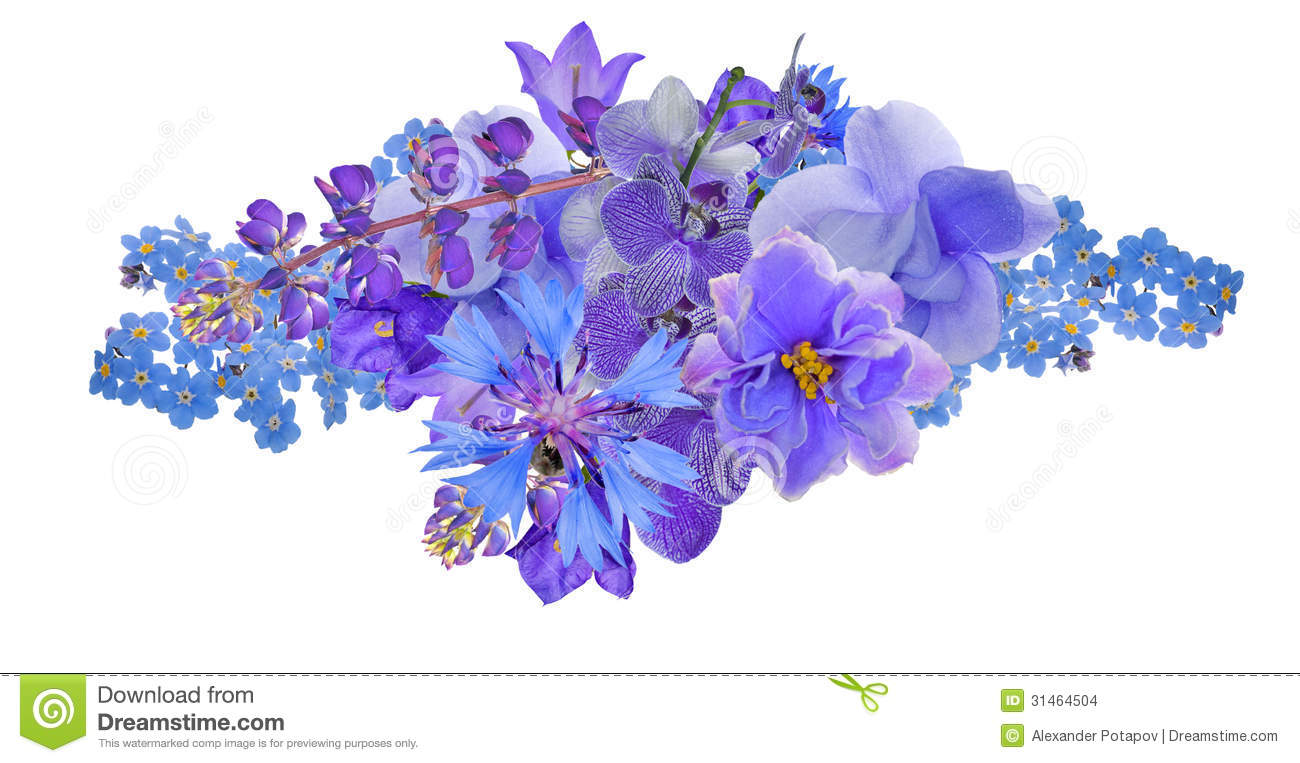 Bunch of blue flowers isolated on white stock photo image of green bunch of blue flowers isolated on white mightylinksfo Choice Image