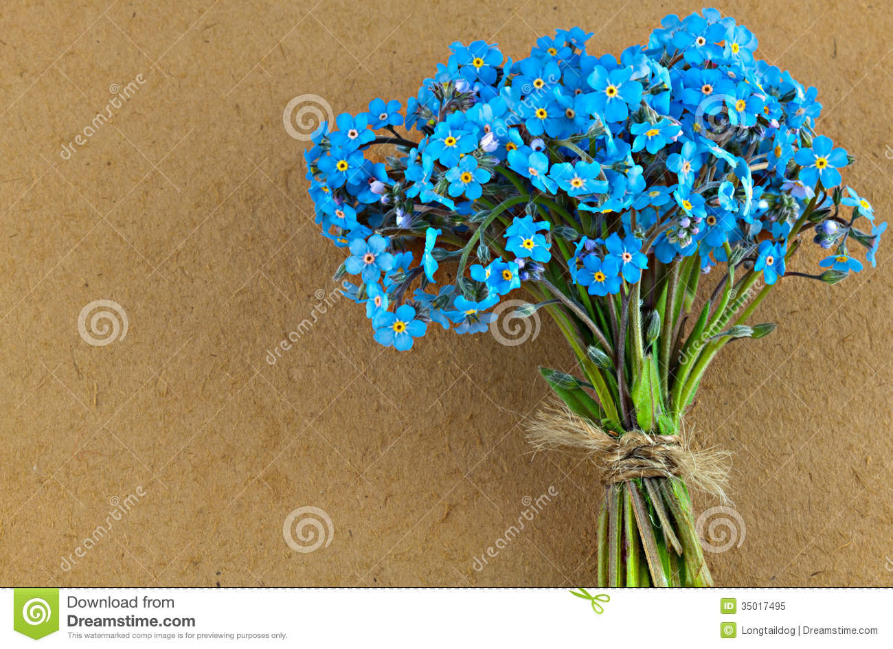 Bunch of blue forget me not flower stock image image of easter bunch of blue forget me not flower mightylinksfo