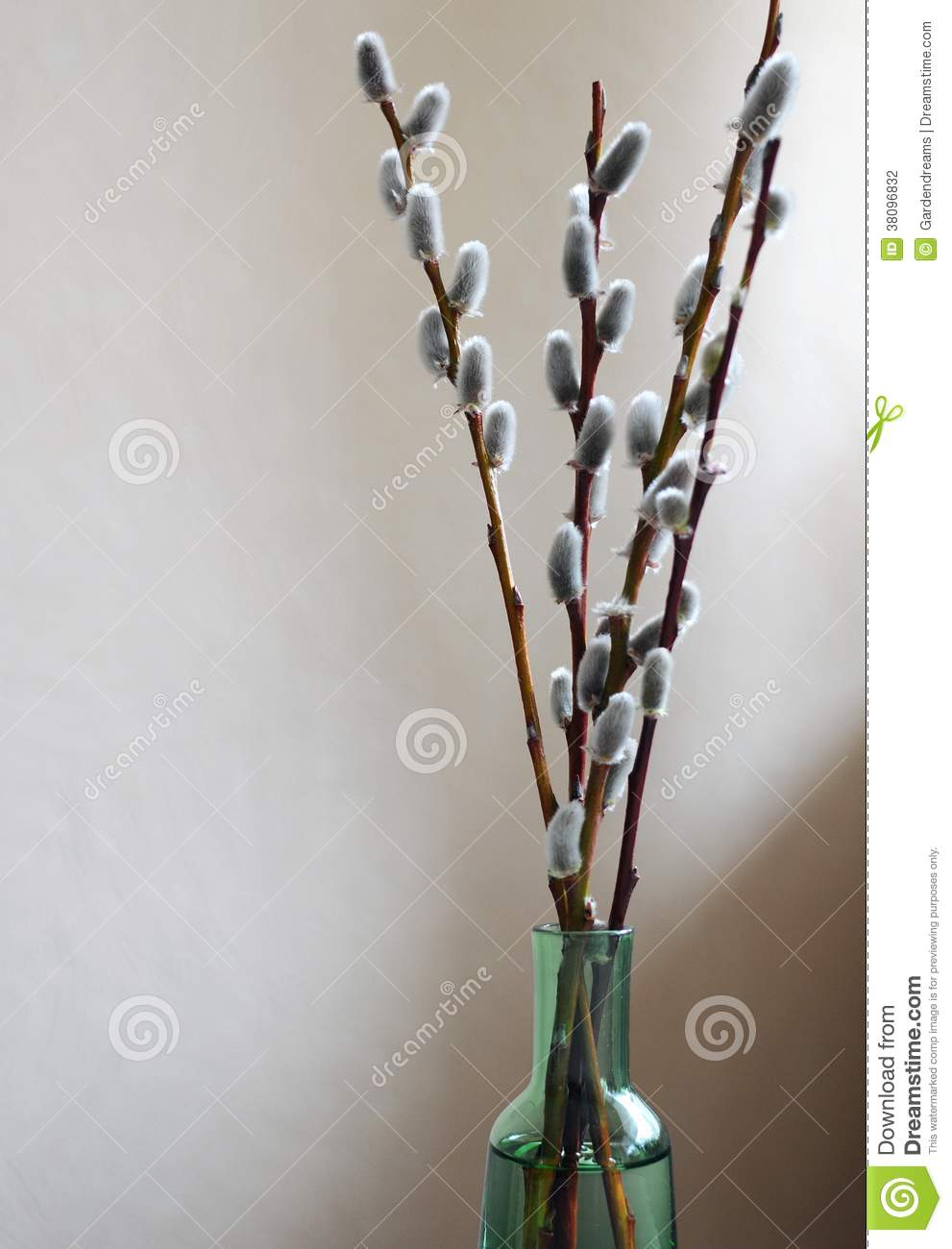 Bunch of catkin twigs in a green glass vase stock photo image of royalty free stock photo reviewsmspy
