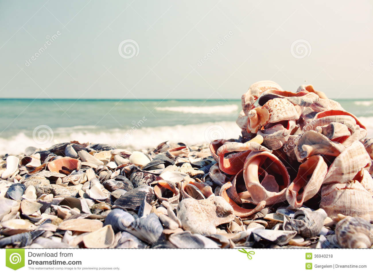 Locationphotos G1584828 W2 Mandarmoni west bengal as well Royalty Free Stock Photos Bunch Different Sea Shells Calm Sight Lots Empty Beach Image36940218 besides 5954277822 furthermore Sana furthermore Malibu Summer. on 5