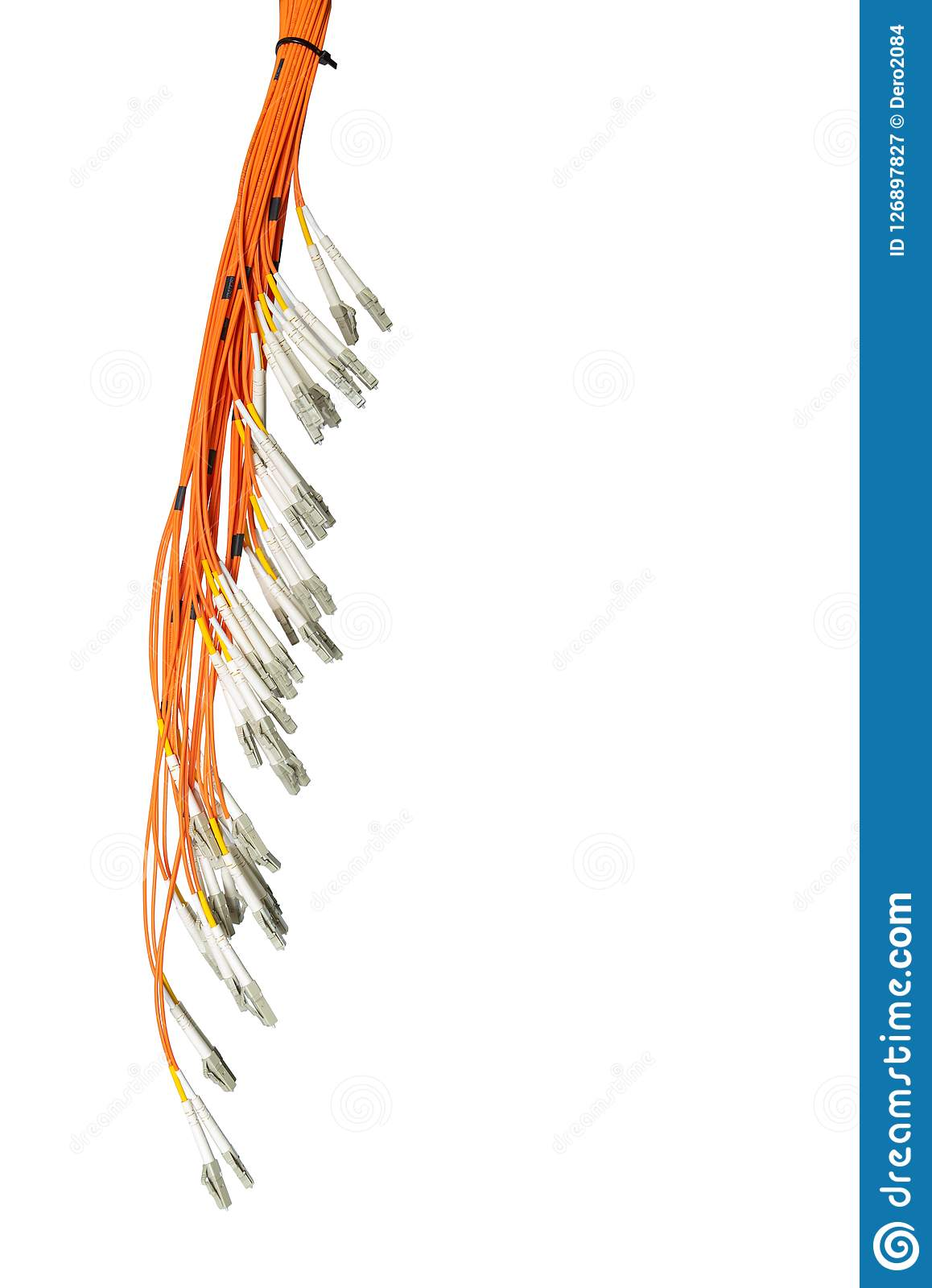 Bunch of fiber optic cables and connectors, isolated on white background. IT technology, data transmission channel