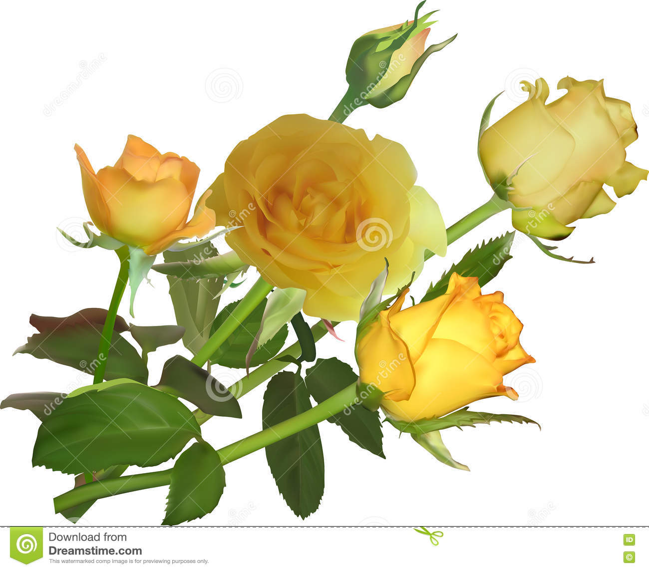 Bunch of five yellow rose flowers stock vector image 74644964 flowers illustration isolated rose yellow dhlflorist Image collections
