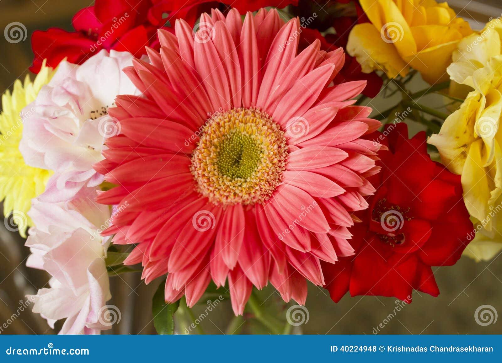 Bunch Of Flowers Stock Photo Image Of Dalia Botanic 40224948