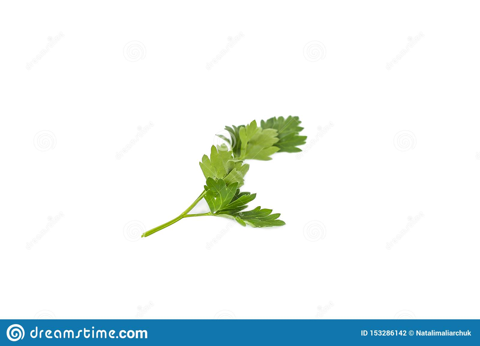 Bunch fresh parsley isolated on white background. Close up