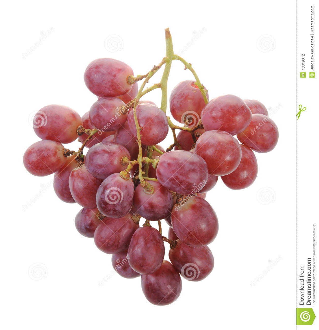 A Bunch Of Grapes Stock Photography Image 13319072