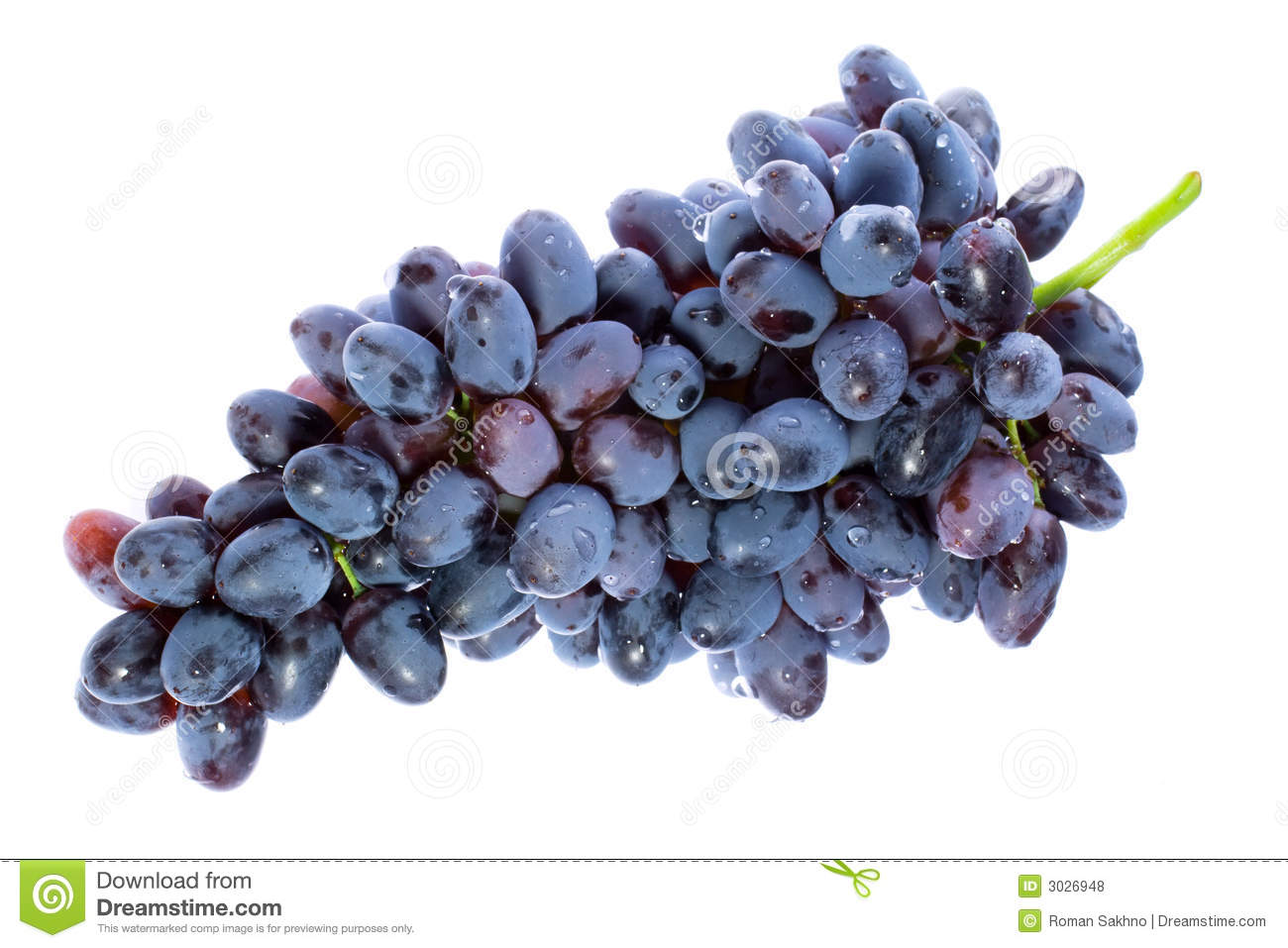 bunch of grapes stock photo image of growing  eating raindrop vector drawing raindrop vector icon
