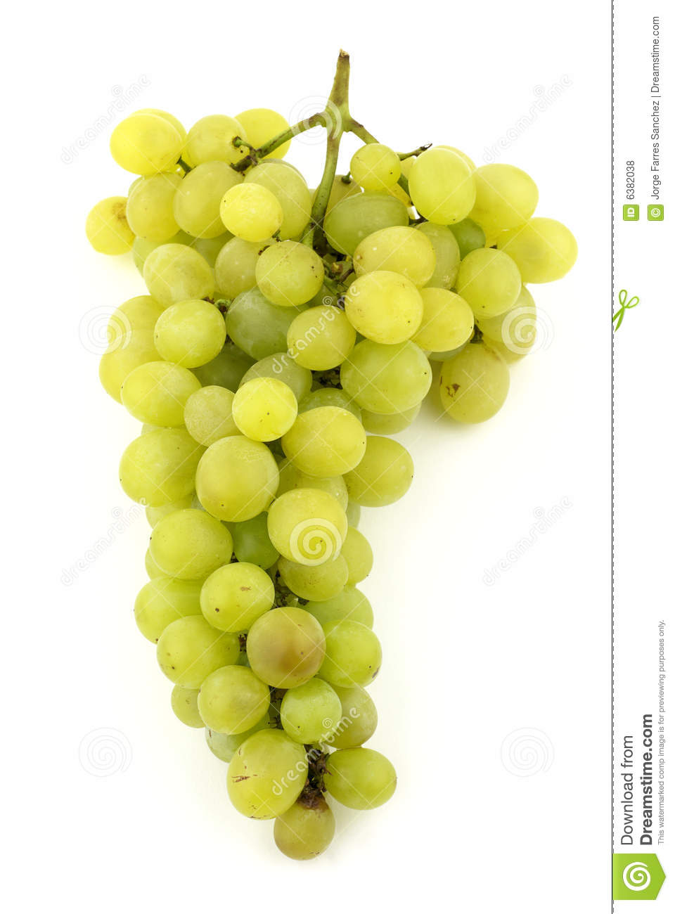 Bunch Of Grapes Stock Photo Image Of Macro Grape Wine 6382038