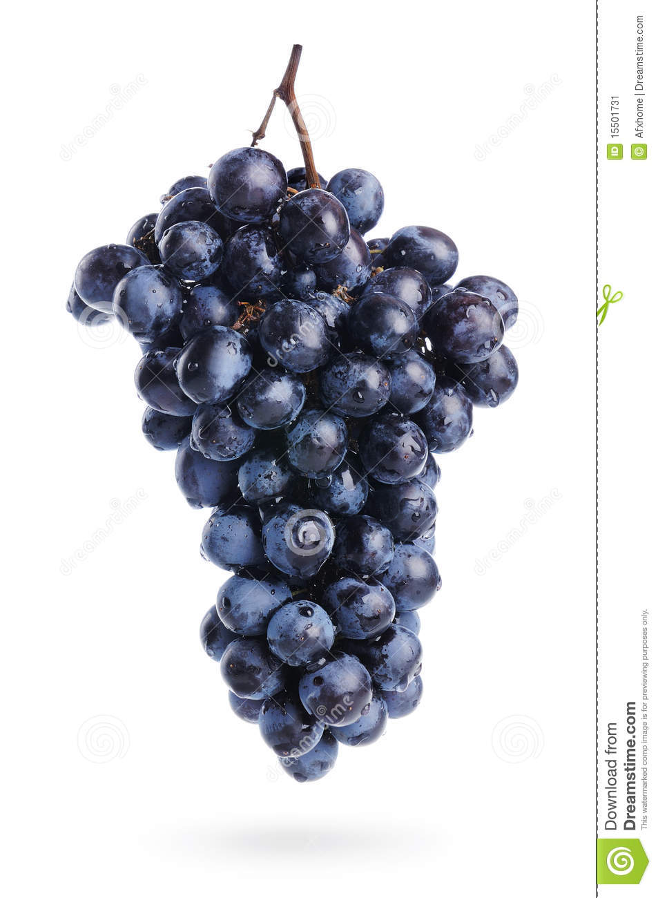 Bunch Of Grapes With Water Drops, Isolated Stock Image - Image ...