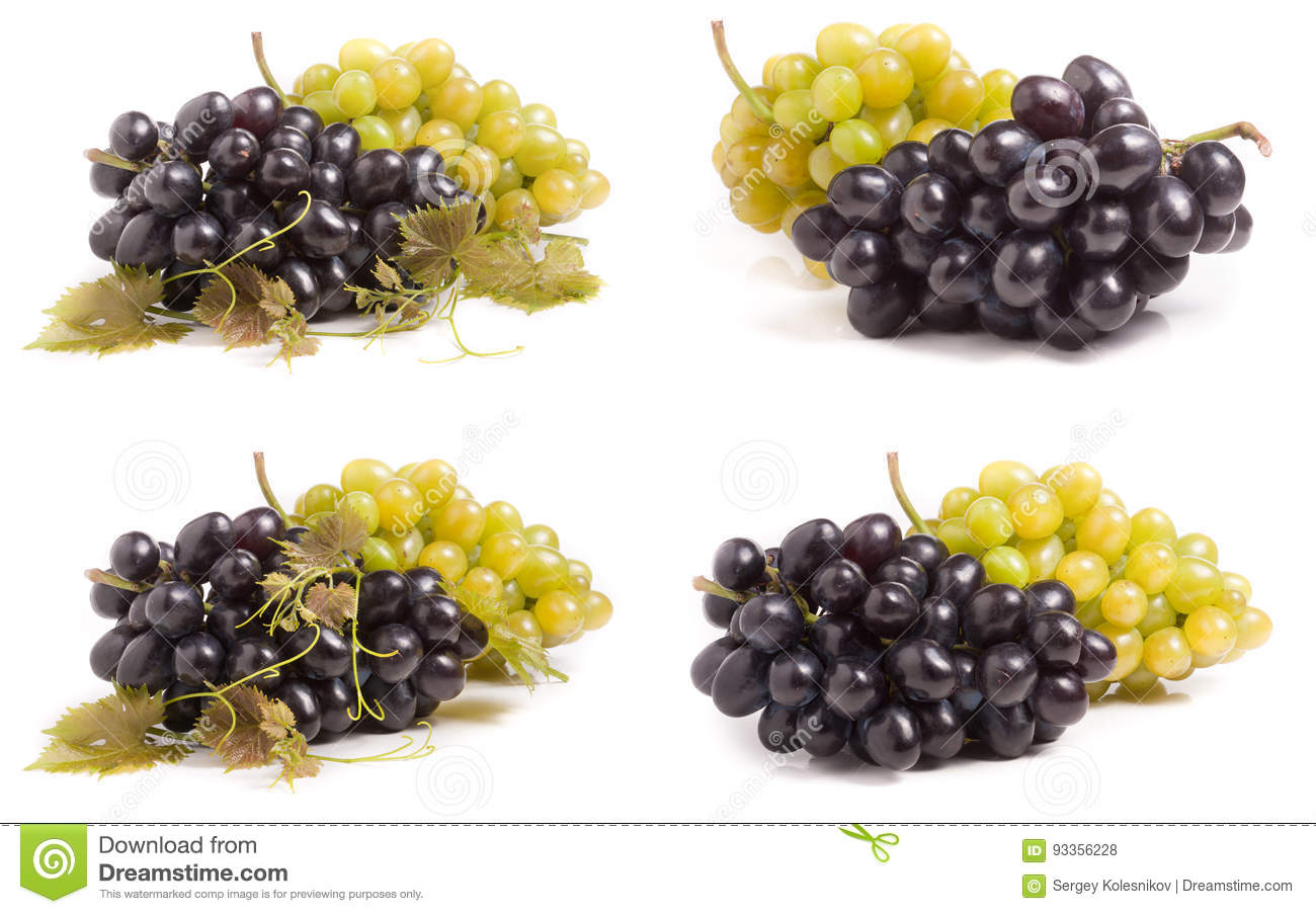 Bunch of green and blue grape isolated on white background. Set or collection