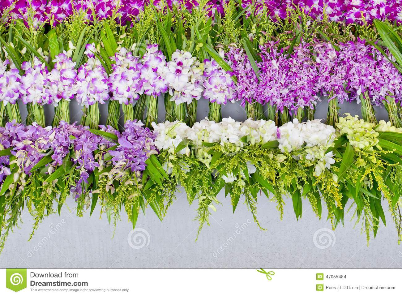 Bunch Of Local Thai Orchid At Flower Market For Buddha ...
