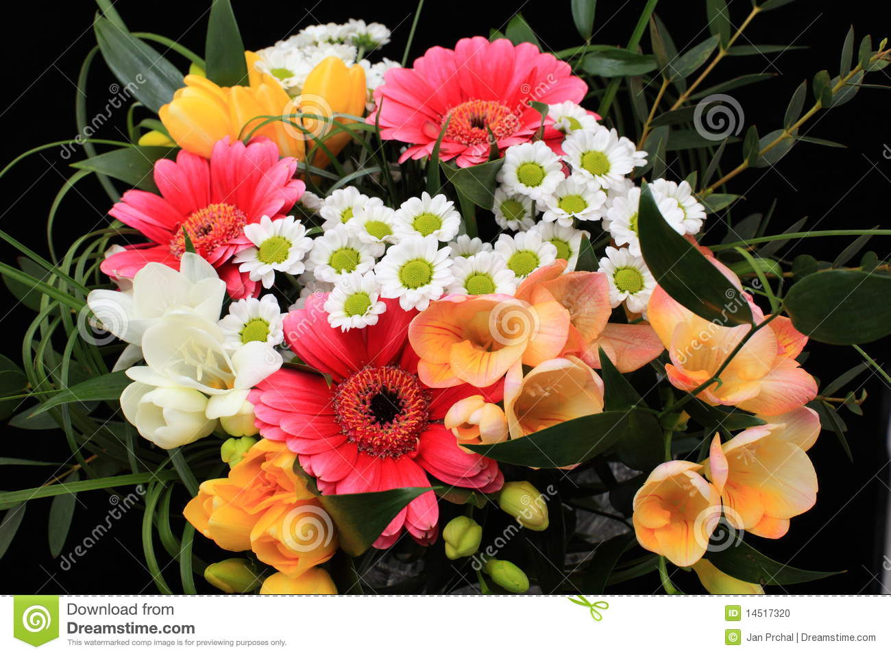 Bunch Of Many Different Flowers Stock Photo Image Of