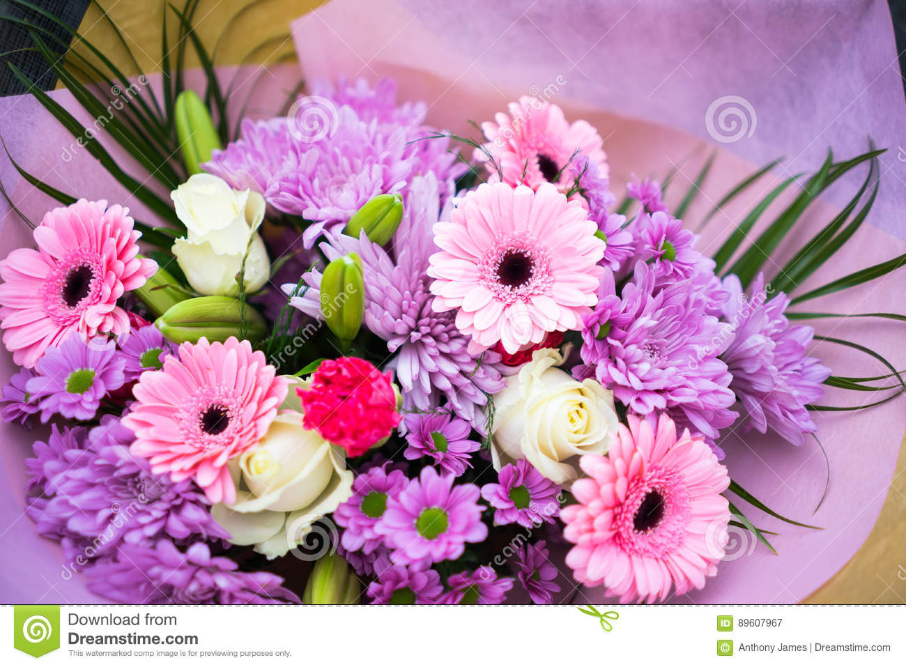 Bunch Of Pink Red And White Flowers Stock Image Image Of Petal