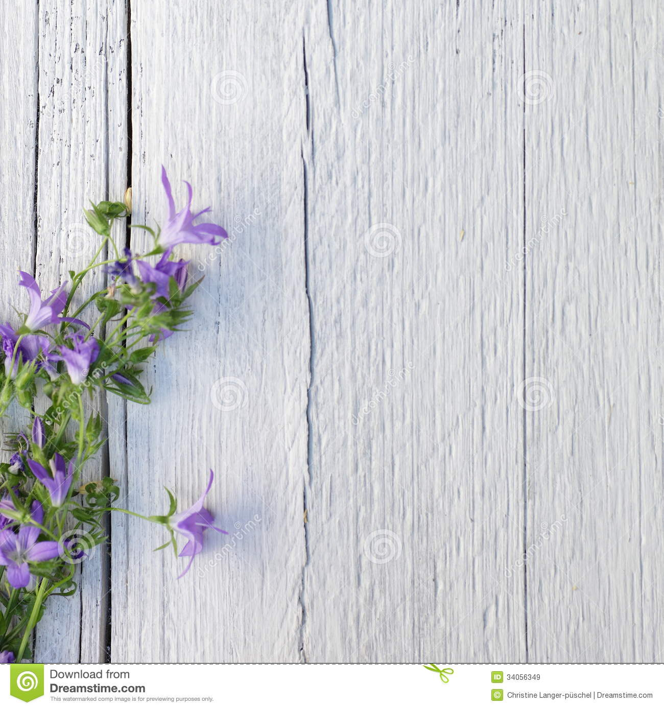 Bunch of delicate small purple flowers on white painted wood with ...