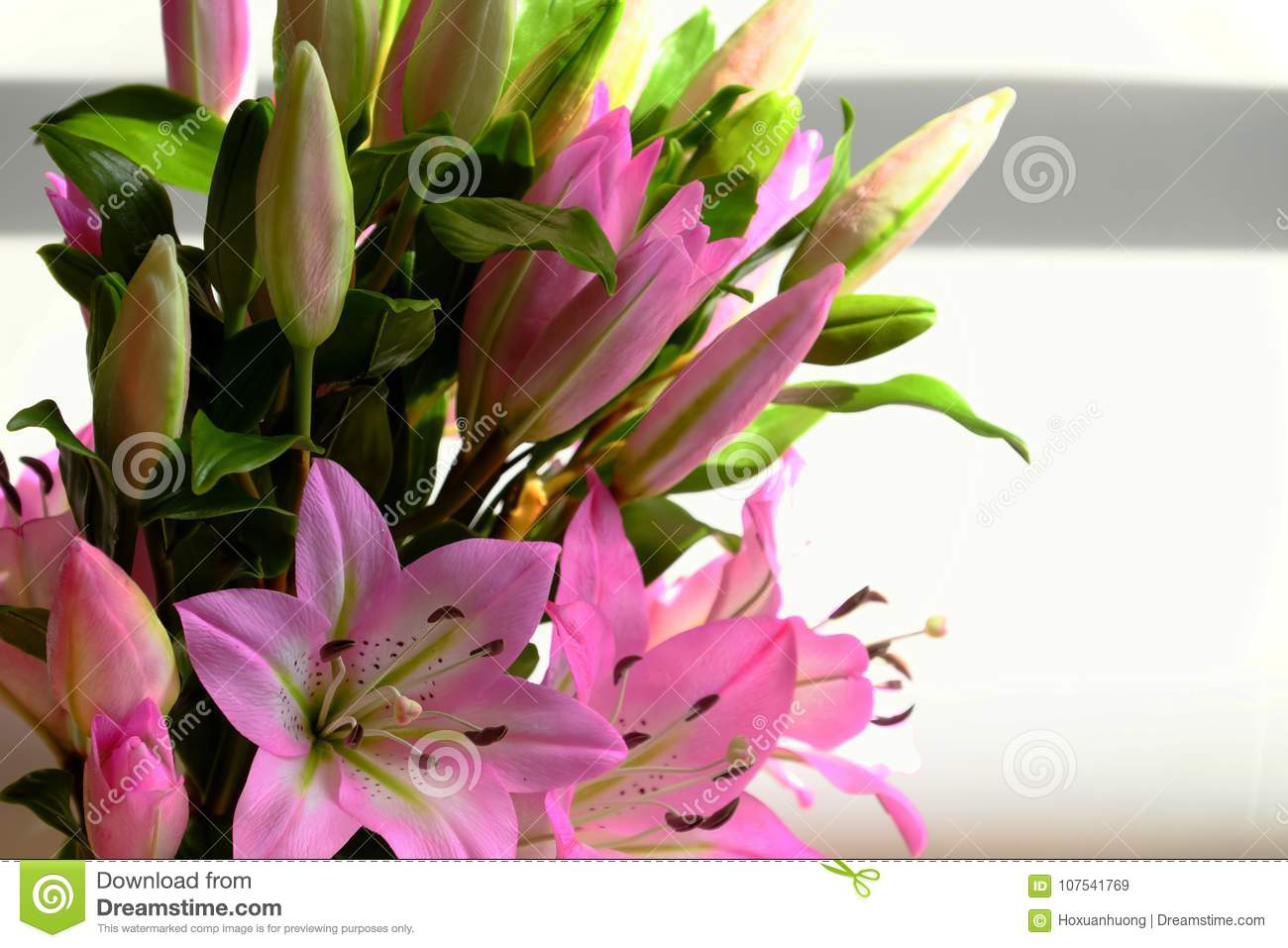 Bunch of purple lily flower stock image image of flowers download bunch of purple lily flower stock image image of flowers background 107541769 izmirmasajfo