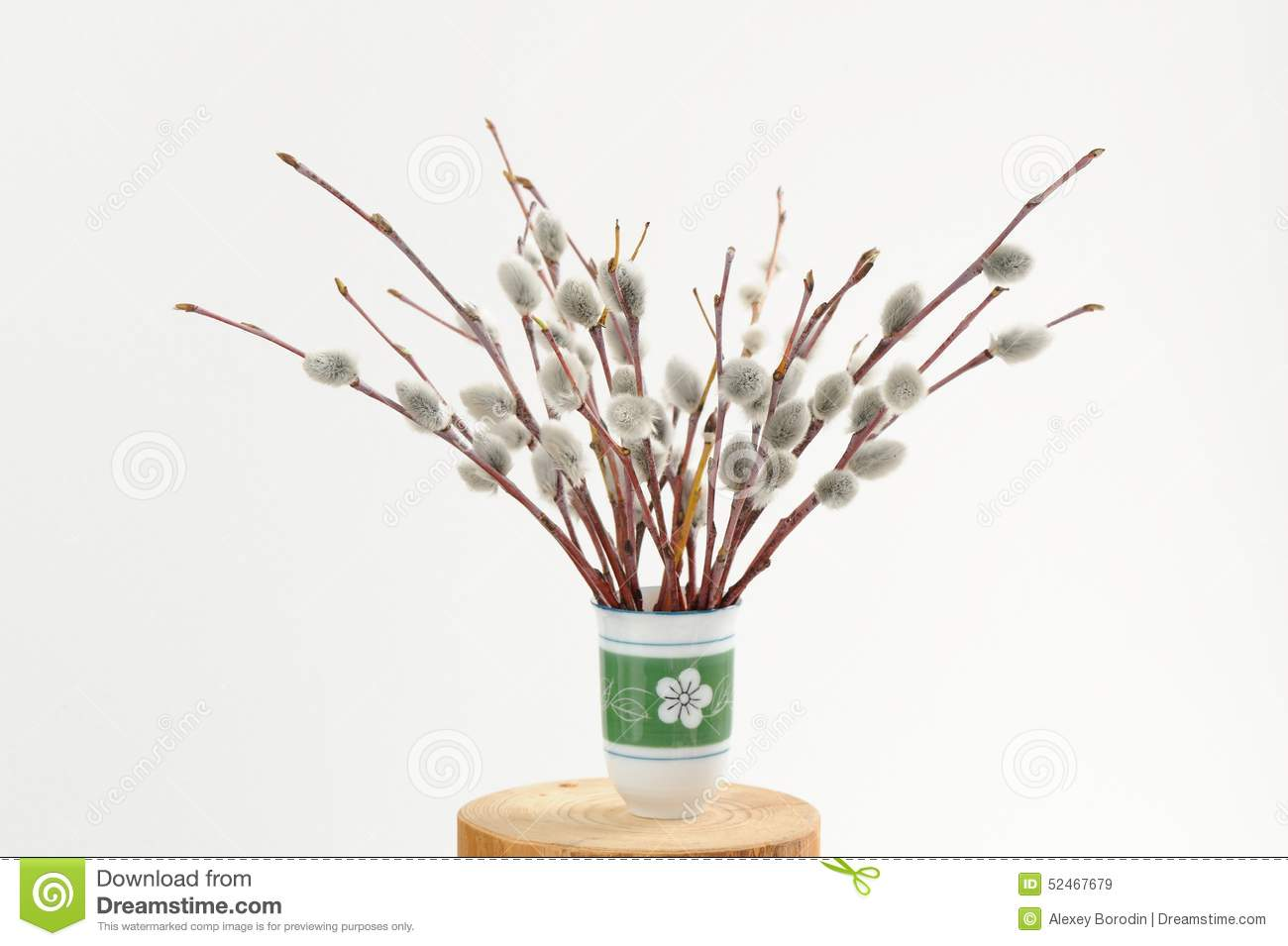 Bunch of willow twigs in green vase on white background stock royalty free stock photo reviewsmspy