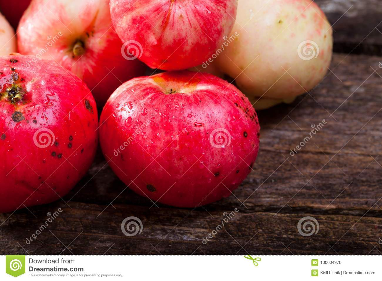 Download Red ripe apples stock photo. Image of rural, rustic - 100004970