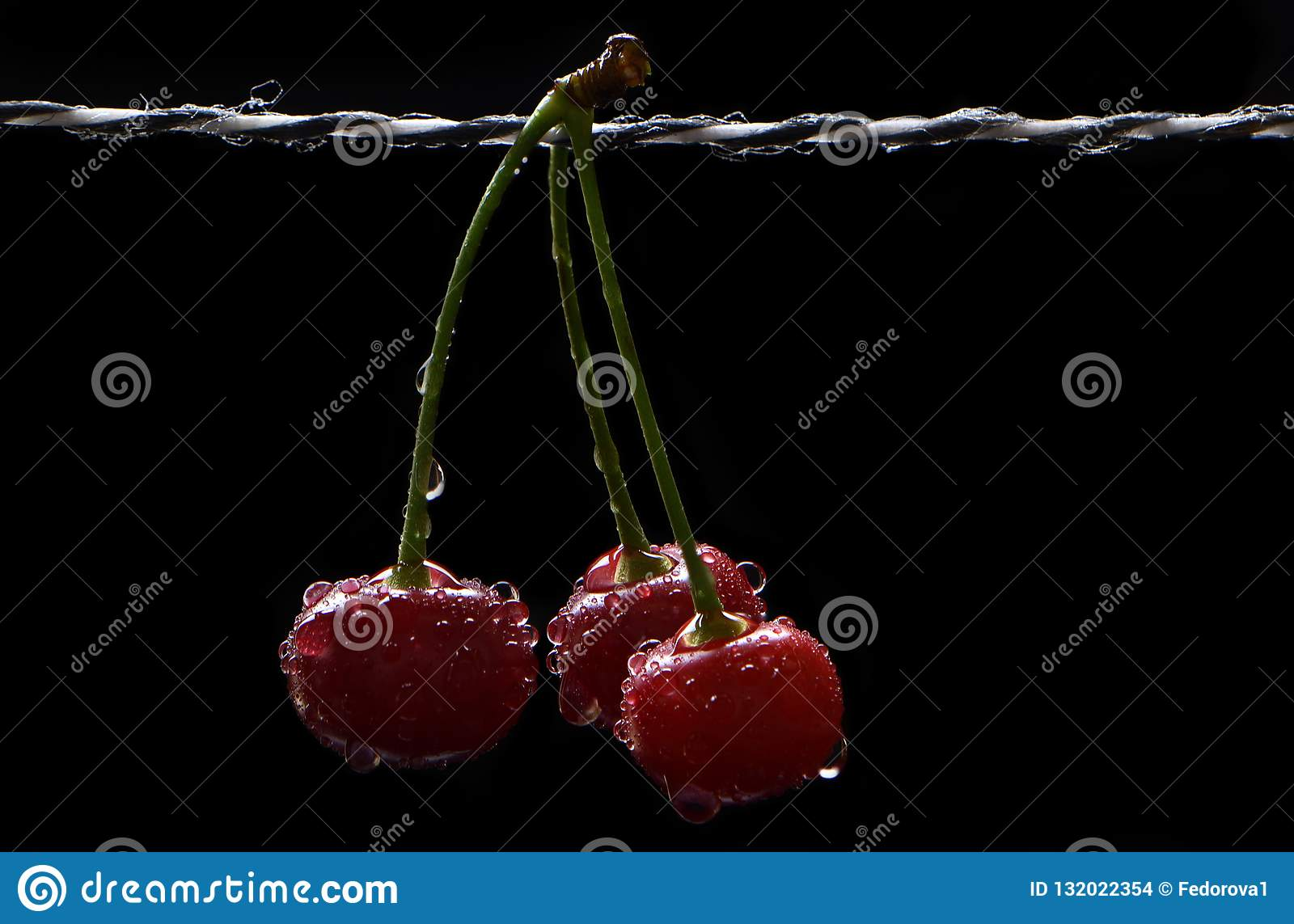 Bunch of ripe cherry in drops