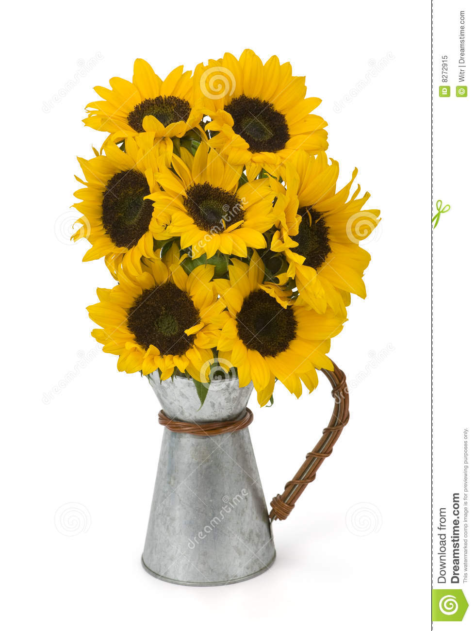Bunch Of Sunflowers Royalty Free Stock Photo Image 8272915