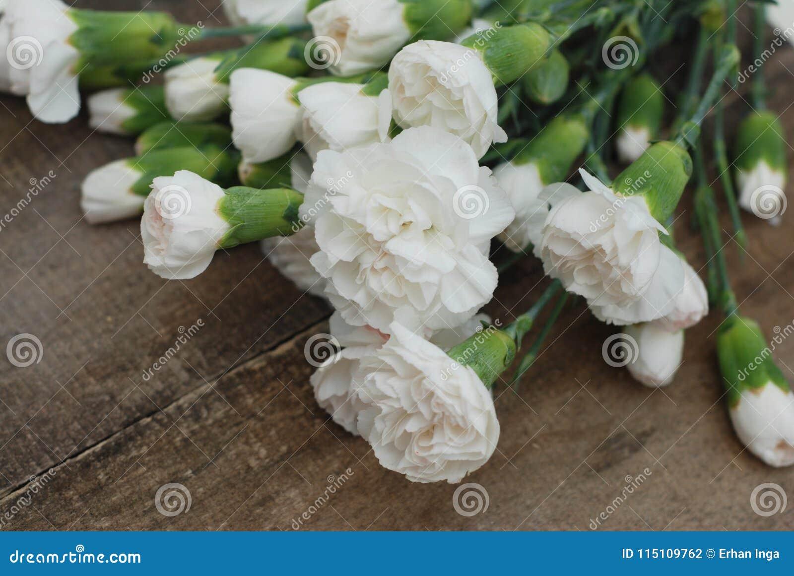 Bunch White Carnation Flower Bouquet Arrangement Composition Rustic