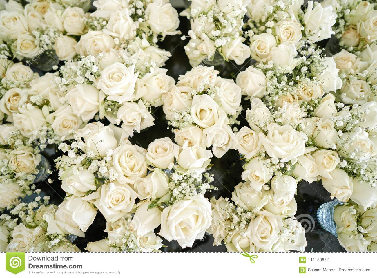 A Bunch Of White And Cream Roses The Babys Breath Gypsophila