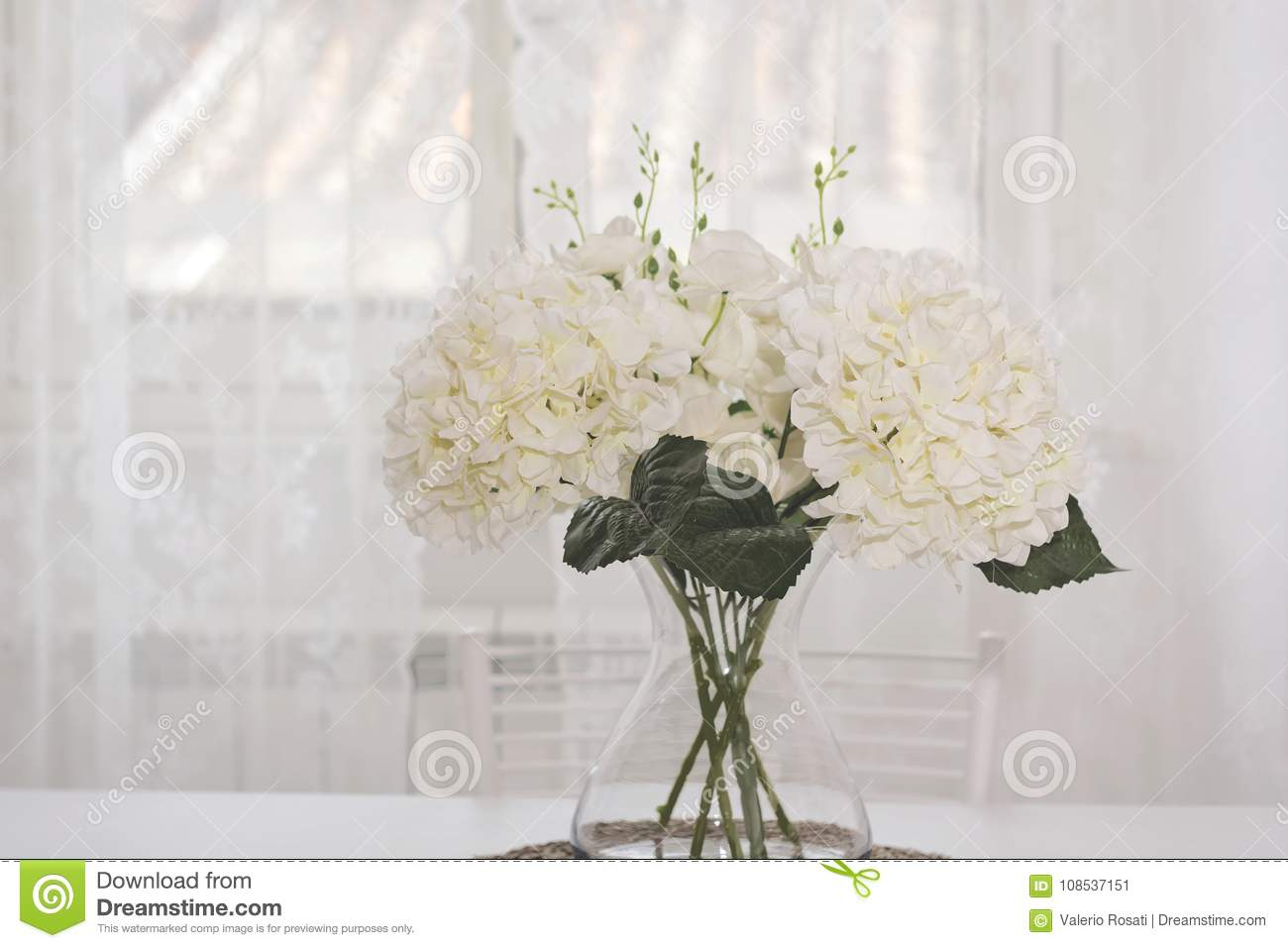 A Bunch Of White Flowers In A Glass Jar Stock Image Image Of