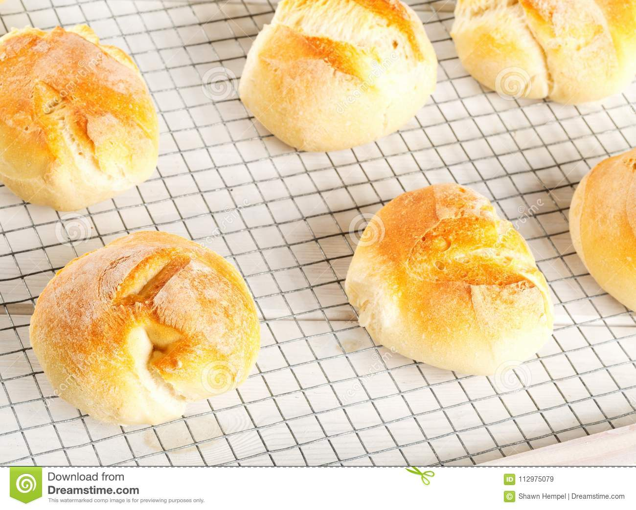 Bunch of whole, fresh baked wheat buns on cooling rack on white