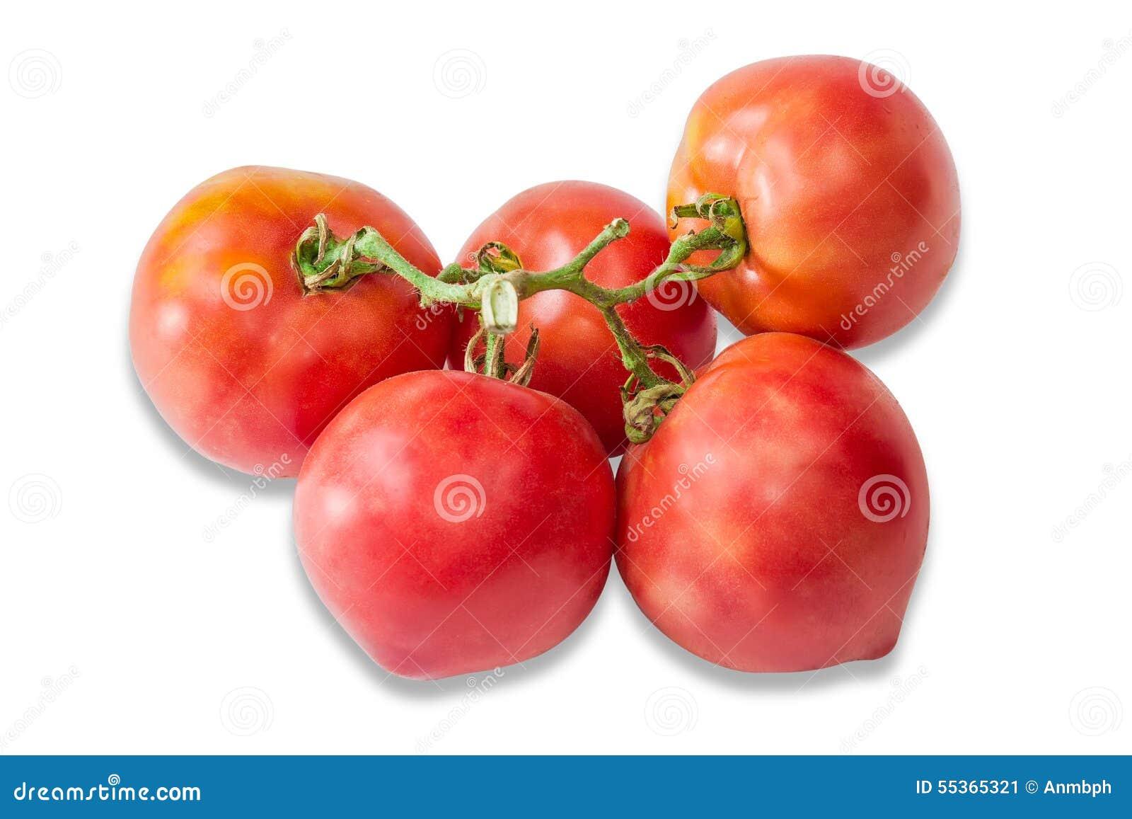 Bunche dei pomodori