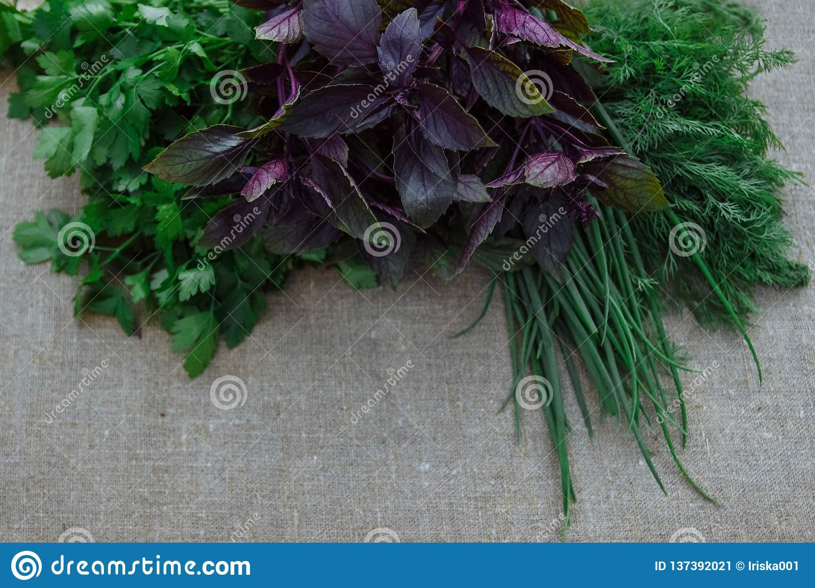 Still life of healthy and spring herbs