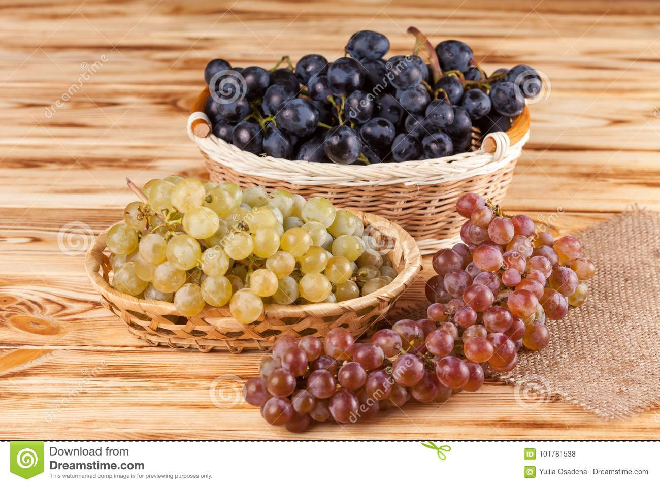 Bunches of fresh ripe blue grapes in wicker basket on piece of sackcloth on a wooden textured backdrop. Beautiful background with