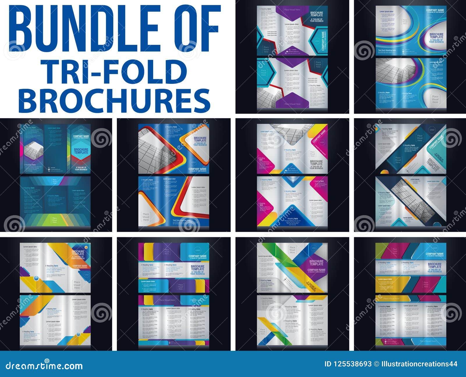 bundel of tri fold brochure stock vector illustration of flyer